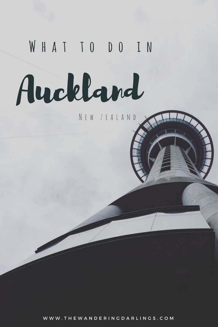 what to do in Auckland new zealand by the Wandering Darlinngs
