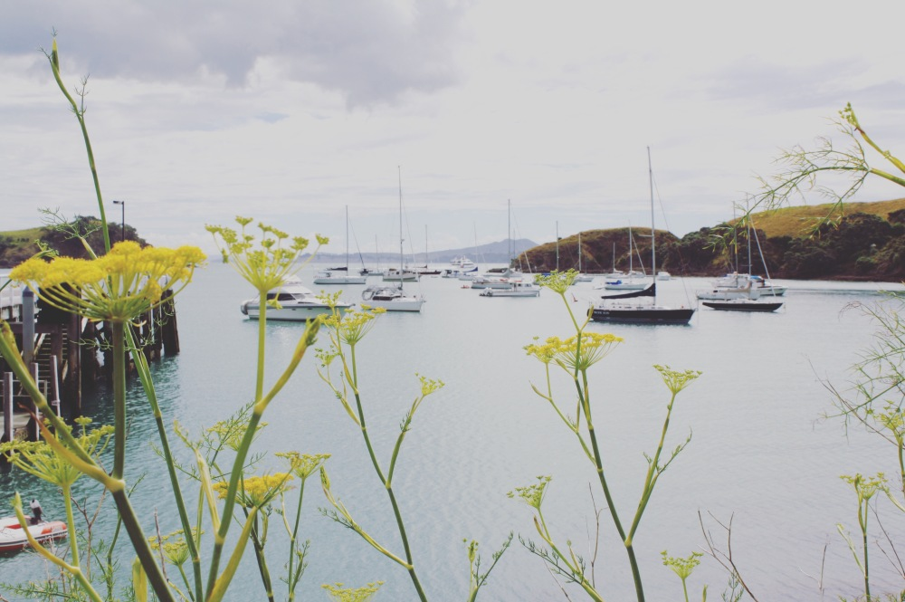 View from Waiheke Island, New Zealand. what to see and do in Auckland by The Wandering Darlings